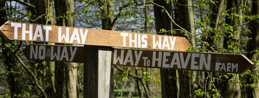 That way, this way